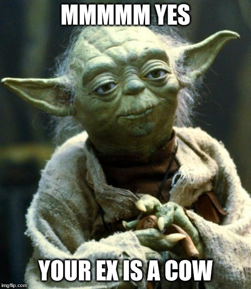 Star Wars Yoda Meme | MMMMM YES YOUR EX IS A COW | image tagged in memes,star wars yoda | made w/ Imgflip meme maker