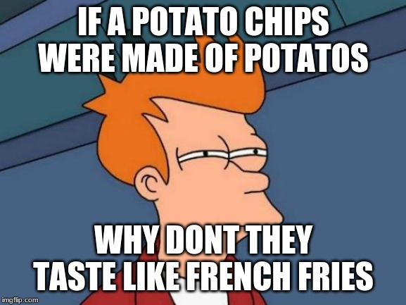 Futurama Fry Meme | IF A POTATO CHIPS WERE MADE OF POTATOS WHY DONT THEY TASTE LIKE FRENCH FRIES | image tagged in memes,futurama fry | made w/ Imgflip meme maker