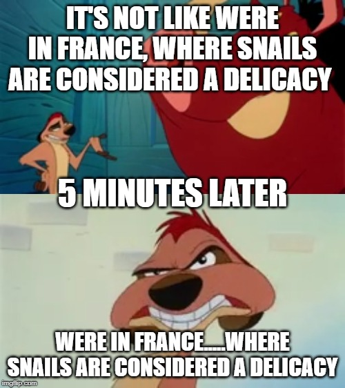 Irony over 9000!!! |  IT'S NOT LIKE WERE IN FRANCE, WHERE SNAILS ARE CONSIDERED A DELICACY; 5 MINUTES LATER; WERE IN FRANCE.....WHERE SNAILS ARE CONSIDERED A DELICACY | image tagged in irony,timon,comedy | made w/ Imgflip meme maker