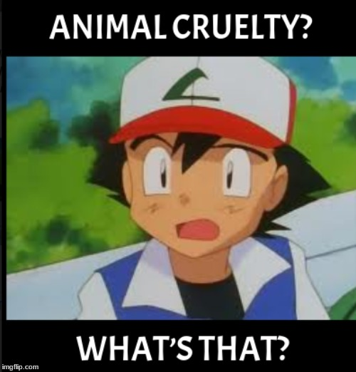 Animal cruelty, WHAT'S THAT | image tagged in pokemon,funny memes,funny | made w/ Imgflip meme maker