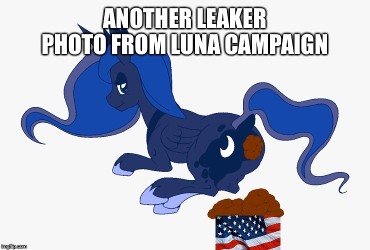 Fank u prajekt varitatas, vary kewl! |  ANOTHER LEAKER PHOTO FROM LUNA CAMPAIGN | image tagged in princess luna,project veritas,poop,usa | made w/ Imgflip meme maker