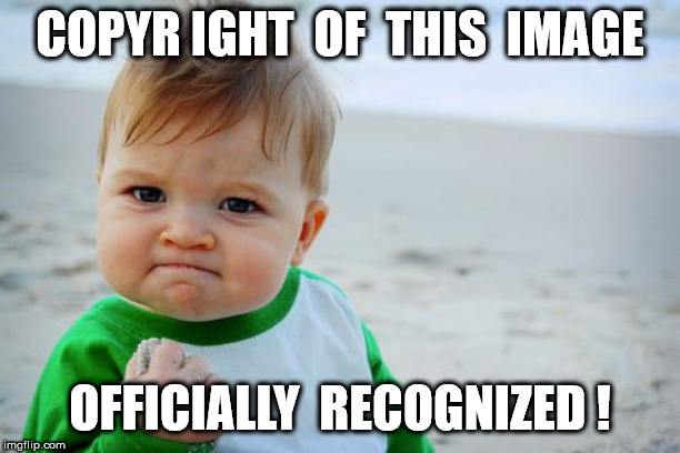 Success Kid Original | COPYR IGHT  OF  THIS  IMAGE OFFICIALLY  RECOGNIZED ! | image tagged in memes,success kid original | made w/ Imgflip meme maker