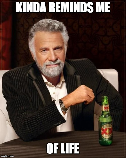 The Most Interesting Man In The World Meme | KINDA REMINDS ME OF LIFE | image tagged in memes,the most interesting man in the world | made w/ Imgflip meme maker