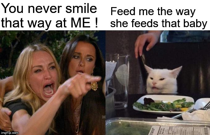 Woman Yelling At Cat Meme | You never smile that way at ME ! Feed me the way she feeds that baby | image tagged in memes,woman yelling at cat | made w/ Imgflip meme maker