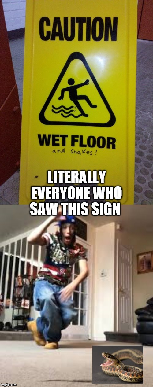 Just came across this |  LITERALLY EVERYONE WHO SAW THIS SIGN | image tagged in oh shit a rat,snake,wet,caution sign | made w/ Imgflip meme maker
