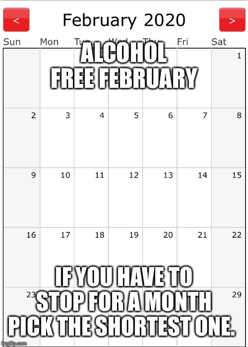 Alcohol Free February | ALCOHOL FREE FEBRUARY IF YOU HAVE TO STOP FOR A MONTH PICK THE SHORTEST ONE. | image tagged in drinking | made w/ Imgflip meme maker