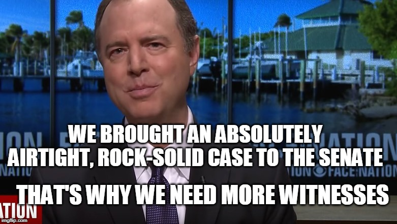 Where Are The Witnesses? | WE BROUGHT AN ABSOLUTELY AIRTIGHT, ROCK-SOLID CASE TO THE SENATE THAT'S WHY WE NEED MORE WITNESSES | image tagged in impeach trump,baloney,adam schiff | made w/ Imgflip meme maker