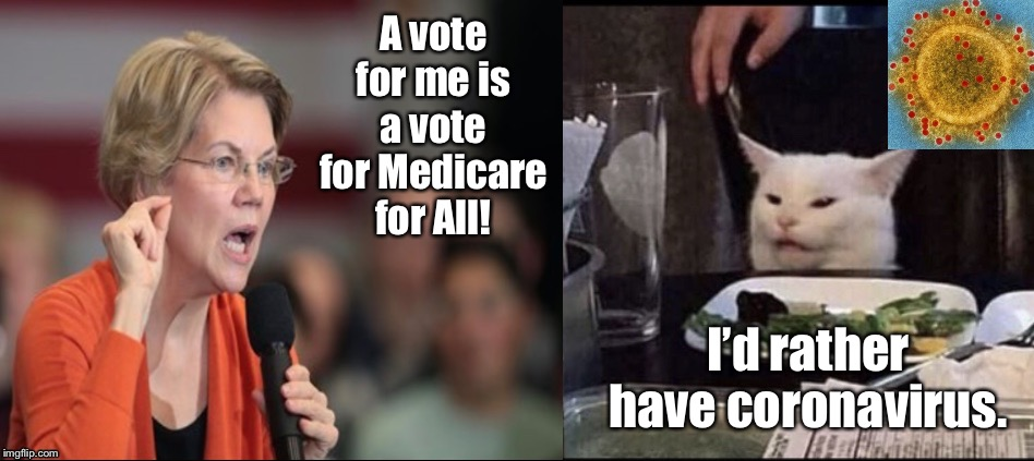 Warren versus Smudge the Cat |  A vote for me is a vote for Medicare for All! I'd rather have coronavirus. | image tagged in warren versus smudge the cat,memes,elizabeth warren,medicare for all,coronavirus,bernie sanders | made w/ Imgflip meme maker