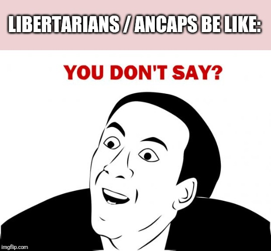 You Don't Say Meme | LIBERTARIANS / ANCAPS BE LIKE: | image tagged in memes,you don't say | made w/ Imgflip meme maker
