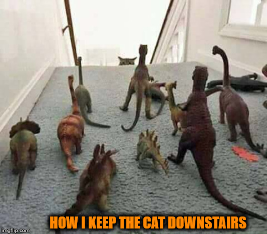 Seems like he is taking on herd of dinos | HOW I KEEP THE CAT DOWNSTAIRS | image tagged in cats | made w/ Imgflip meme maker