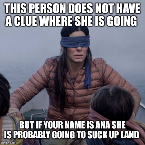 Bird Box Meme | THIS PERSON DOES NOT HAVE A CLUE WHERE SHE IS GOING BUT IF YOUR NAME IS ANA SHE IS PROBABLY GOING TO SUCK UP LAND | image tagged in memes,bird box | made w/ Imgflip meme maker