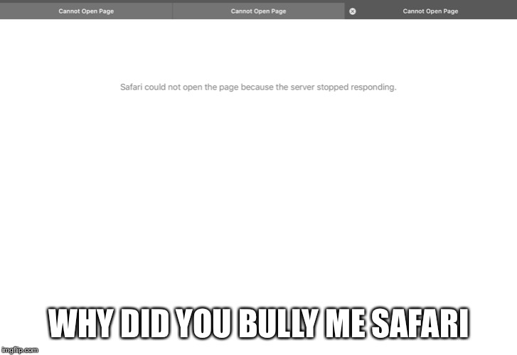 Cannot open page | WHY DID YOU BULLY ME SAFARI | image tagged in internet | made w/ Imgflip meme maker