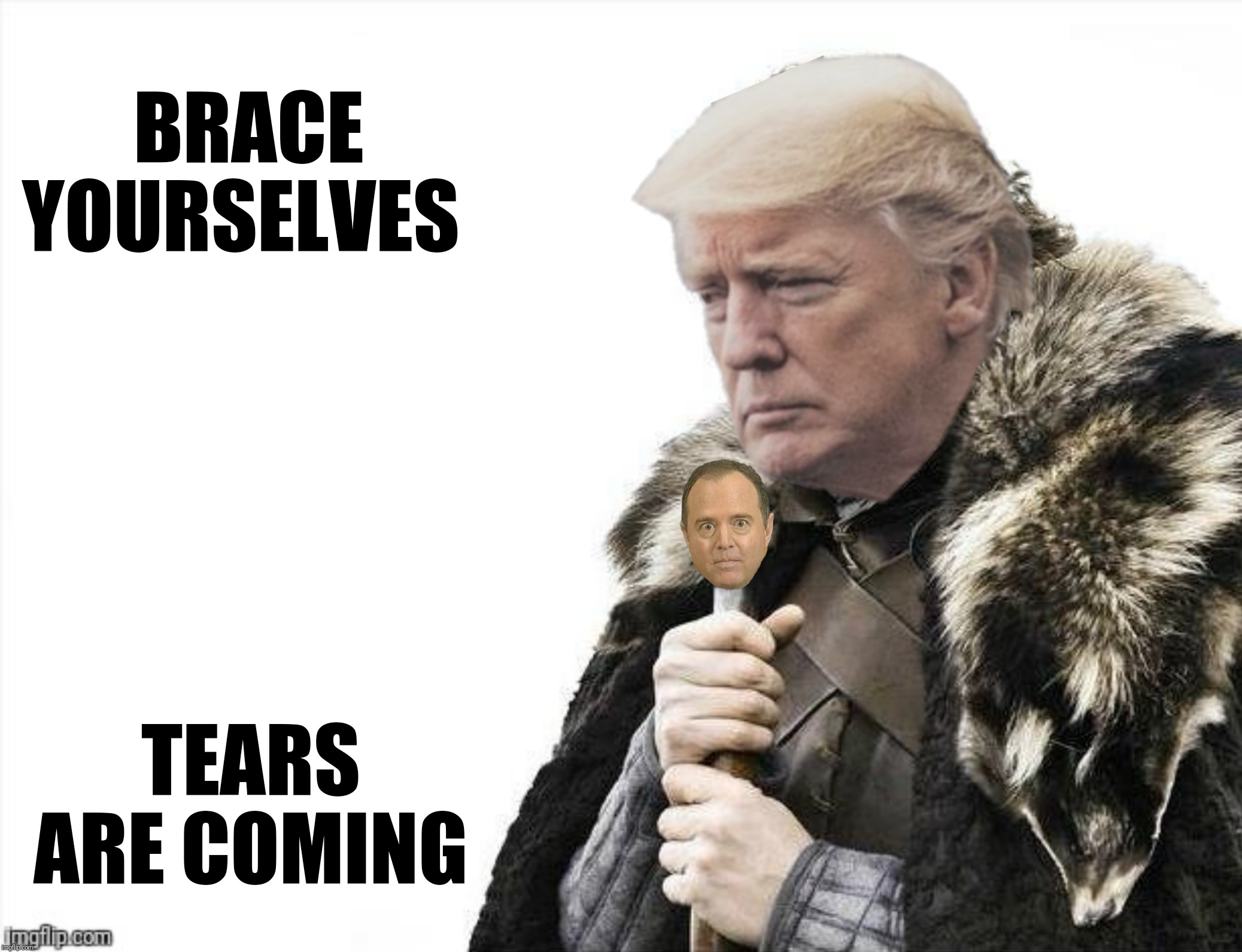 Is that a pike? | BRACE YOURSELVES TEARS ARE COMING | image tagged in brace yourselves x is coming,donald trump,adam schiff,salty liberal tears | made w/ Imgflip meme maker