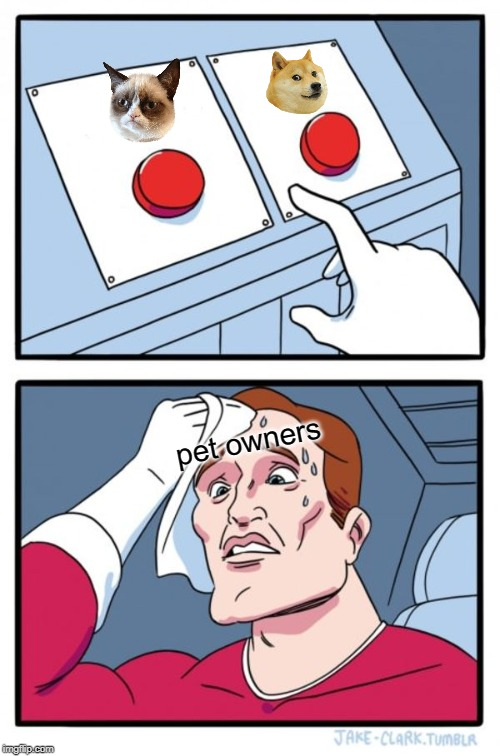 Two Buttons |  pet owners | image tagged in memes,two buttons | made w/ Imgflip meme maker