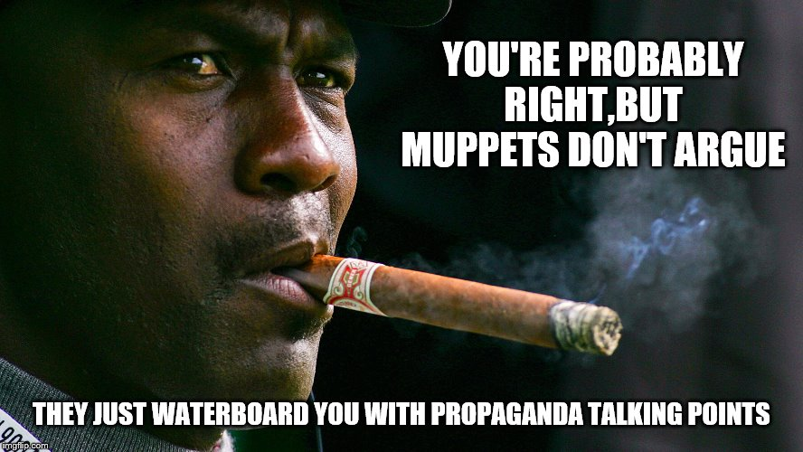 YOU'RE PROBABLY RIGHT,BUT MUPPETS DON'T ARGUE THEY JUST WATERBOARD YOU WITH PROPAGANDA TALKING POINTS | made w/ Imgflip meme maker