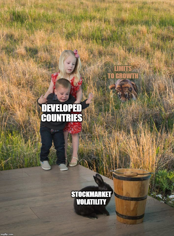 Eye on the tiger | DEVELOPED COUNTRIES STOCKMARKET VOLATILITY LIMITS TO GROWTH | image tagged in fear this not that,tiger,bunny,scared kids | made w/ Imgflip meme maker