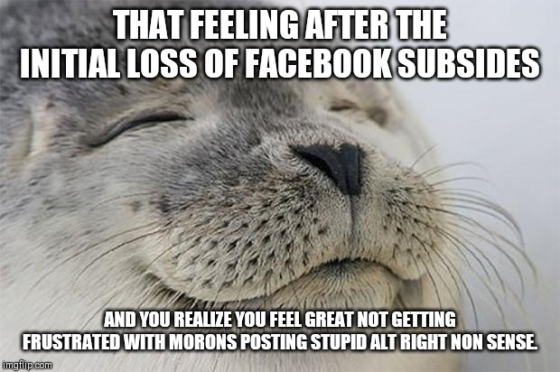 Satisfied Seal |  THAT FEELING AFTER THE INITIAL LOSS OF FACEBOOK SUBSIDES; AND YOU REALIZE YOU FEEL GREAT NOT GETTING FRUSTRATED WITH MORONS POSTING STUPID ALT RIGHT NON SENSE. | image tagged in memes,satisfied seal,AdviceAnimals | made w/ Imgflip meme maker