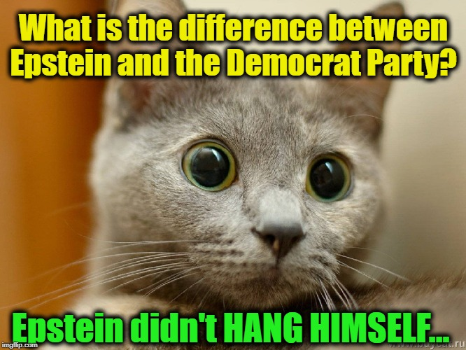 TDS~~The Hate is Real & Deadly | What is the difference between Epstein and the Democrat Party? Epstein didn't HANG HIMSELF... | image tagged in politics,political meme,politics lol,political humor,american politics,trump impeachment | made w/ Imgflip meme maker