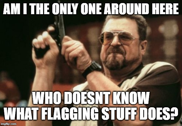 Am I The Only One Around Here | AM I THE ONLY ONE AROUND HERE WHO DOESNT KNOW WHAT FLAGGING STUFF DOES? | image tagged in memes,am i the only one around here | made w/ Imgflip meme maker