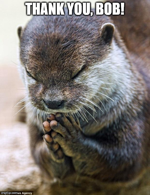 Thank you Lord Otter | THANK YOU, BOB! | image tagged in thank you lord otter | made w/ Imgflip meme maker