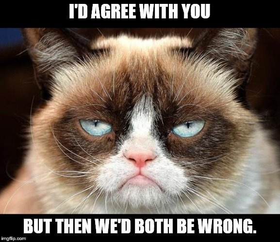 Grumpy Cat Not Amused |  I'D AGREE WITH YOU; BUT THEN WE'D BOTH BE WRONG. | image tagged in memes,grumpy cat not amused,grumpy cat,insults | made w/ Imgflip meme maker