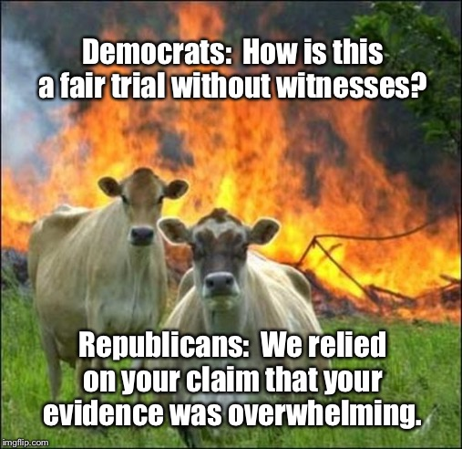 Senate Trial |  Democrats:  How is this a fair trial without witnesses? Republicans:  We relied on your claim that your evidence was overwhelming. | image tagged in memes,evil cows,senate trial,impeachment,donald trump,sick of schiff | made w/ Imgflip meme maker