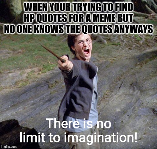 Harry potter |  WHEN YOUR TRYING TO FIND HP QUOTES FOR A MEME BUT NO ONE KNOWS THE QUOTES ANYWAYS; There is no limit to imagination! | image tagged in harry potter | made w/ Imgflip meme maker