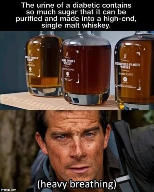 Urine not going to believe it | image tagged in bear grylls | made w/ Imgflip meme maker