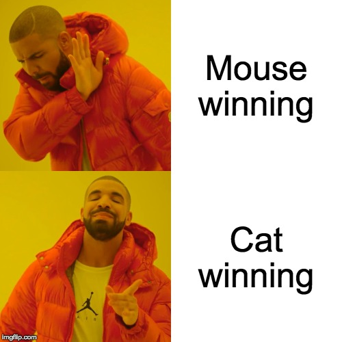 Drake Hotline Bling Meme | Mouse winning Cat winning | image tagged in memes,drake hotline bling | made w/ Imgflip meme maker
