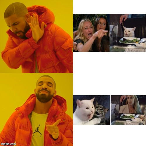 Drake Hotline Bling Meme | image tagged in memes,drake hotline bling | made w/ Imgflip meme maker