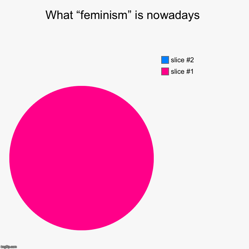 "Wish I could turn back time | What ""feminism"" is nowadays 