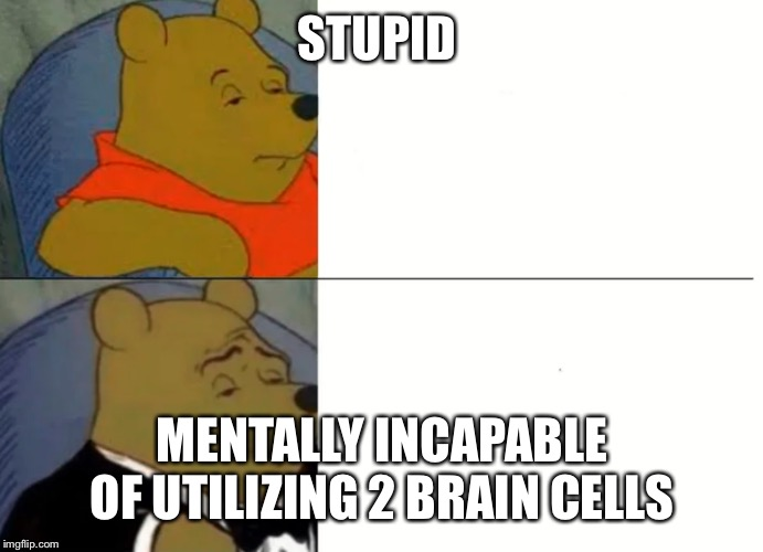 Fancy Winnie The Pooh Meme |  STUPID; MENTALLY INCAPABLE OF UTILIZING 2 BRAIN CELLS | image tagged in fancy winnie the pooh meme | made w/ Imgflip meme maker