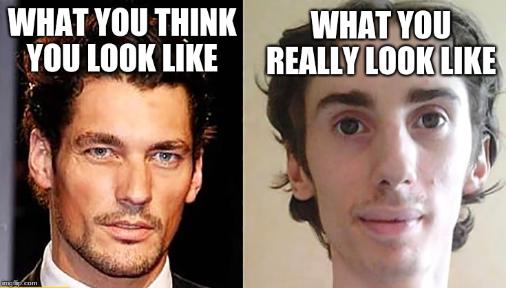 WHAT YOU THINK YOU LOOK LIKE WHAT YOU REALLY LOOK LIKE | image tagged in expectation vs reality | made w/ Imgflip meme maker