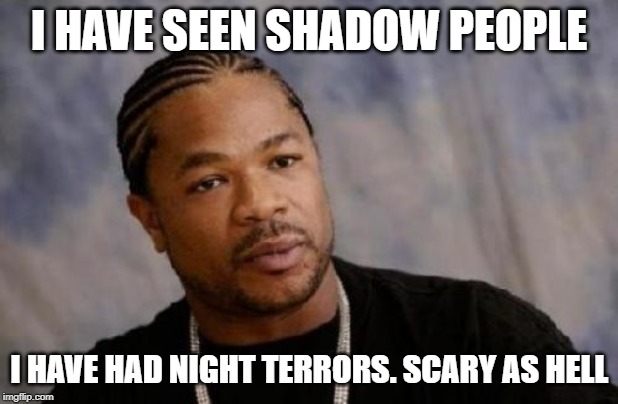 Serious Xzibit |  I HAVE SEEN SHADOW PEOPLE; I HAVE HAD NIGHT TERRORS. SCARY AS HELL | image tagged in memes,serious xzibit | made w/ Imgflip meme maker