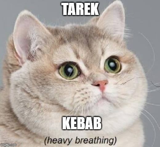 Heavy Breathing Cat | TAREK KEBAB | image tagged in memes,heavy breathing cat | made w/ Imgflip meme maker