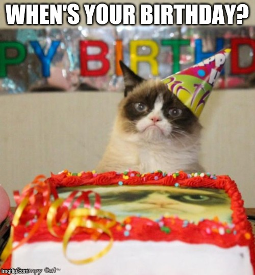 Grumpy Cat Birthday |  WHEN'S YOUR BIRTHDAY? | image tagged in memes,grumpy cat birthday,grumpy cat | made w/ Imgflip meme maker