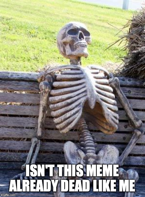Waiting Skeleton |  ISN'T THIS MEME ALREADY DEAD LIKE ME | image tagged in memes,waiting skeleton | made w/ Imgflip meme maker