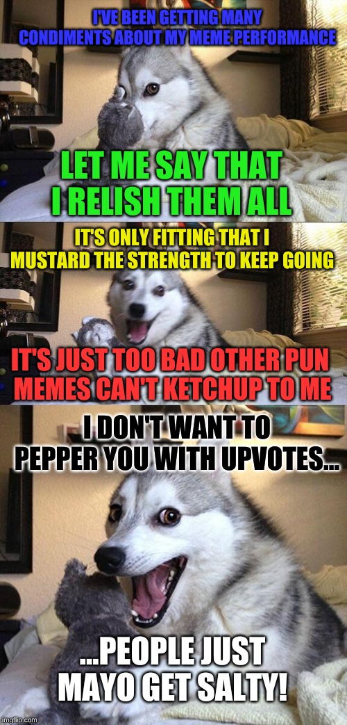 Bad Pun Dog Meme | I'VE BEEN GETTING MANY CONDIMENTS ABOUT MY MEME PERFORMANCE IT'S JUST TOO BAD OTHER PUN  MEMES CAN'T KETCHUP TO ME ...PEOPLE JUST MAYO GET S | image tagged in memes,bad pun dog | made w/ Imgflip meme maker