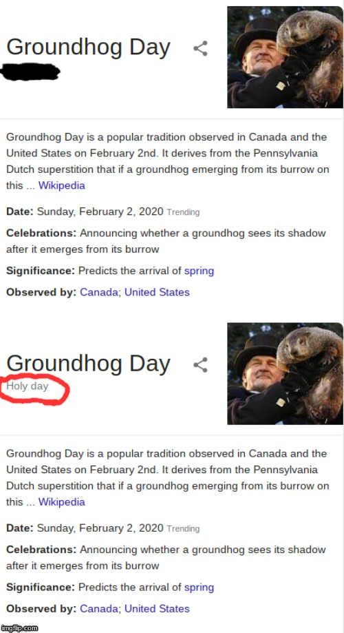 This Dosent Even Need Captions | image tagged in groundhog day,groundhog,google search,wikipedia,funny memes | made w/ Imgflip meme maker