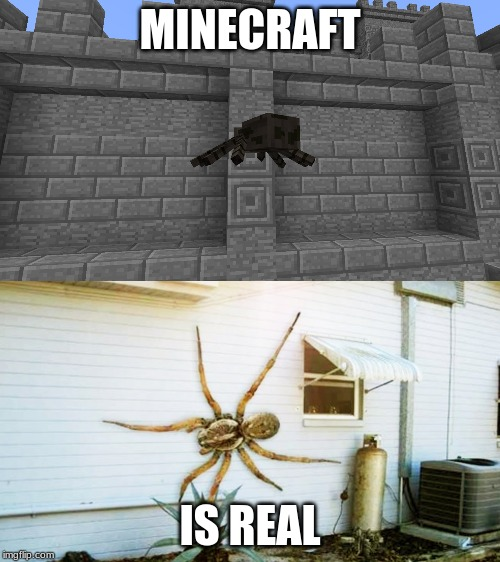 MINECRAFT; IS REAL | image tagged in minecraft | made w/ Imgflip meme maker
