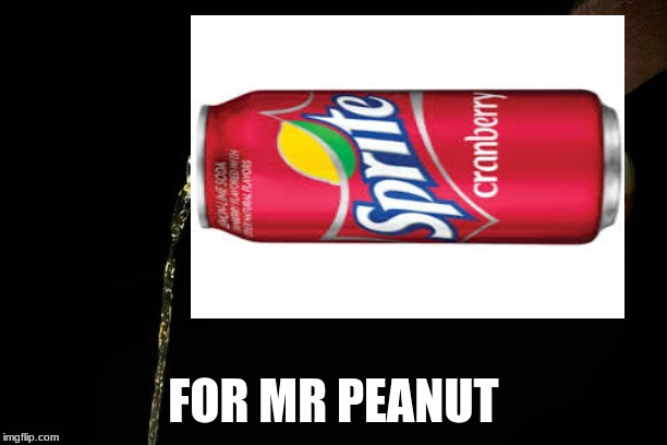 Pour one for the homies | FOR MR PEANUT | image tagged in pour one for the homies | made w/ Imgflip meme maker