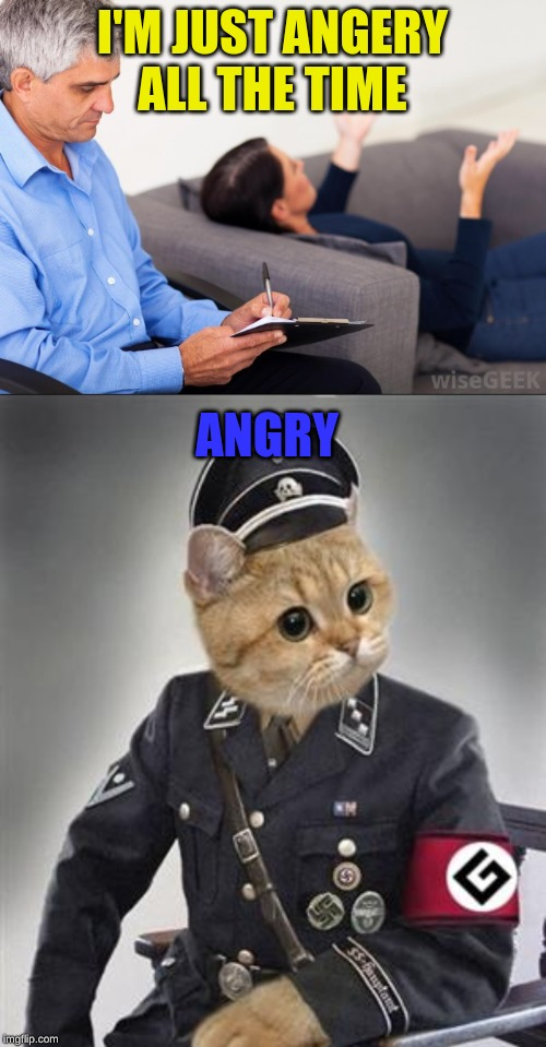 I'M JUST ANGERY ALL THE TIME; ANGRY | image tagged in grammar nazi cat,therapist | made w/ Imgflip meme maker