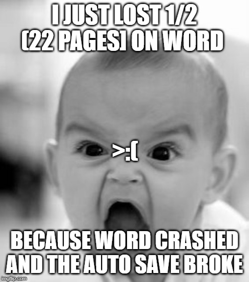 Angry Baby | I JUST LOST 1/2 (22 PAGES] ON WORD BECAUSE WORD CRASHED AND THE AUTO SAVE BROKE >:( | image tagged in memes,angry baby | made w/ Imgflip meme maker