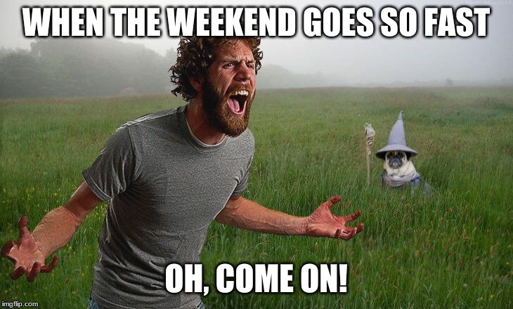 Oh come on | WHEN THE WEEKEND GOES SO FAST OH, COME ON! | image tagged in oh come on | made w/ Imgflip meme maker