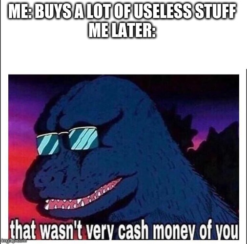 That wasn't very cash money |  ME: BUYS A LOT OF USELESS STUFF   ME LATER: | image tagged in that wasnt very cash money | made w/ Imgflip meme maker