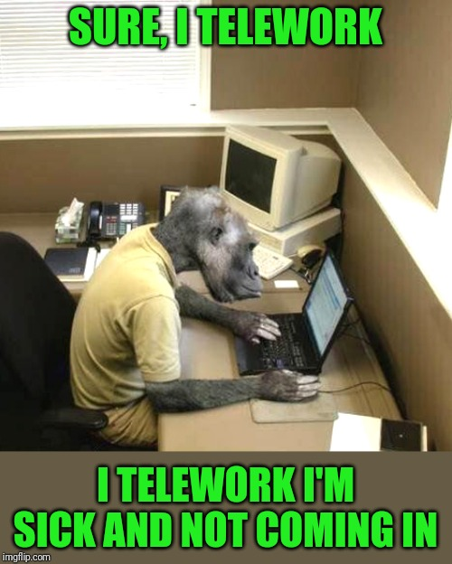Modern problems need modern solutions |  SURE, I TELEWORK; I TELEWORK I'M SICK AND NOT COMING IN | image tagged in memes,monkey business | made w/ Imgflip meme maker