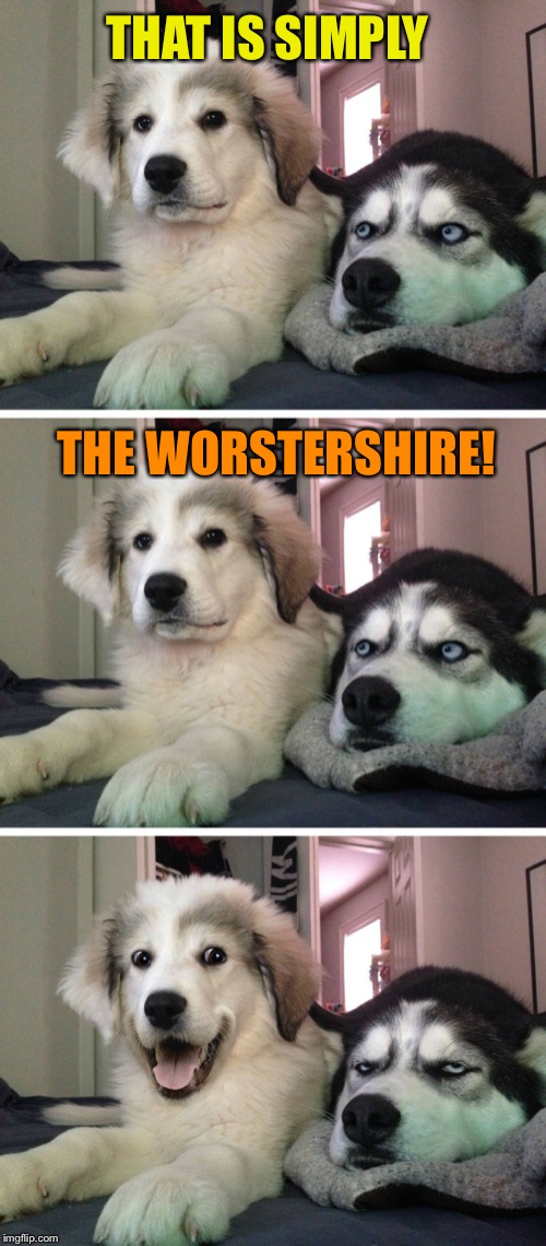 Bad pun dogs | THAT IS SIMPLY THE WORSTERSHIRE! | image tagged in bad pun dogs | made w/ Imgflip meme maker