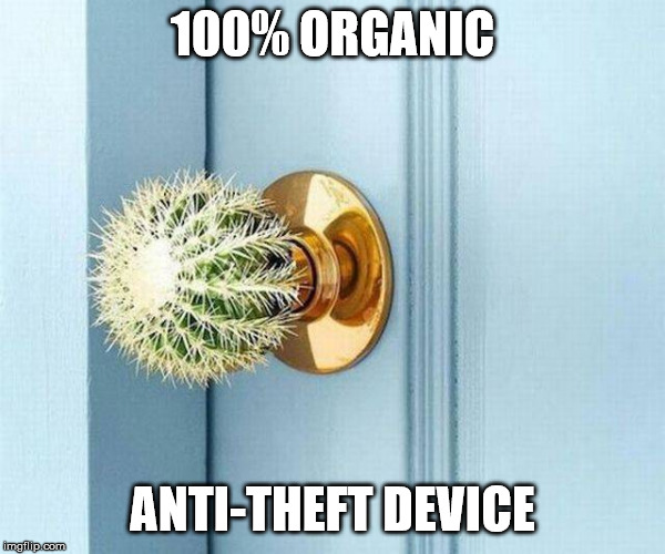 100% ORGANIC; ANTI-THEFT DEVICE | made w/ Imgflip meme maker