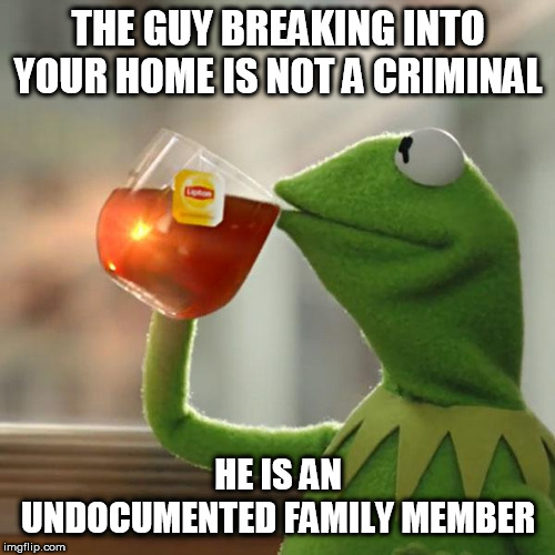 But That's None Of My Business |  THE GUY BREAKING INTO YOUR HOME IS NOT A CRIMINAL; HE IS AN UNDOCUMENTED FAMILY MEMBER | image tagged in memes,but thats none of my business,kermit the frog | made w/ Imgflip meme maker