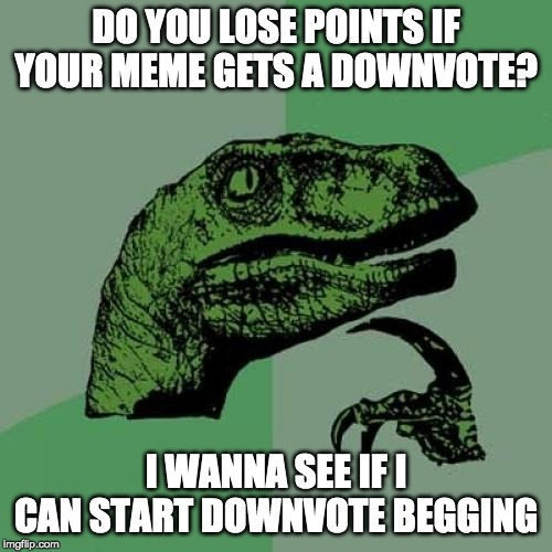 True Beggars | DO YOU LOSE POINTS IF YOUR MEME GETS A DOWNVOTE? I WANNA SEE IF I CAN START DOWNVOTE BEGGING | image tagged in memes,philosoraptor,begging,downvotes | made w/ Imgflip meme maker